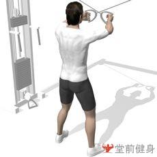 拉力器侧平拉(双臂)