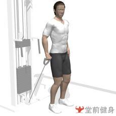 拉力器前平举(单臂)