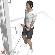 拉力器弯举(双臂)