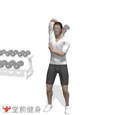哑铃颈后臂屈伸(单臂)