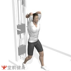 站姿拉力器臂屈伸
