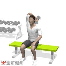 坐姿哑铃屈臂伸(单臂)