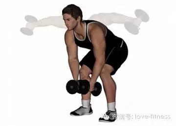 增肌增重训练计划——背+肩