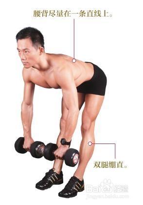 健身计划  【锻炼目标】整个背部肌肉